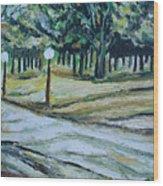 Us Landscpe-14 Wood Print