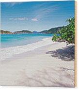 Us Virgin Islands, St. John, Cinnamon Wood Print