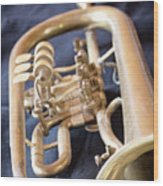 Used Old Trumpet. Vertically. Wood Print