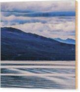 Ushuaia Ar 2 Wood Print