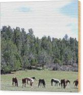 Utah 10 Wood Print
