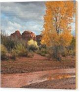 Utah Autumn Wood Print