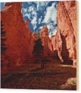 Utah - Bryce Canyon Wood Print