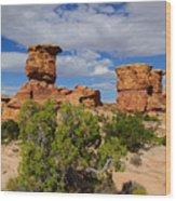 Utah Canyonlands Wood Print