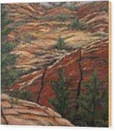 Utah Paradise Wood Print