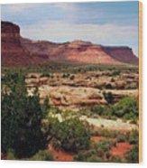 Utah Plateau Mtn M 303 Wood Print