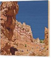 Utah Seventh Graders Climbing Switchbacks On Wall Street, Navajo Trail In Bryce National Park, Utah Wood Print