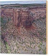 Ute Canyon Wood Print
