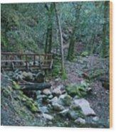 Uvas Canyon Bridge Wood Print