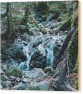 Uvas Canyon Waterfall I Wood Print