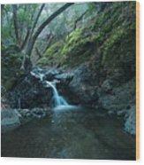 Uvas Canyon Waterfall II Wood Print