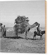 Uzbekistan: Caravan, C1910 Wood Print