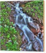 Vail Cascade Wood Print