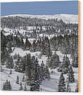 Vail Pass Colorado Winter Wood Print by Brendan Reals