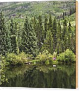 Vail Reflections In The Summer Wood Print