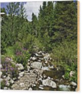 Vail Stream In The Summer 2 Wood Print