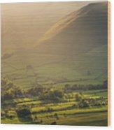Vale Of Edale Wood Print