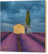 Valensole Shed Wood Print