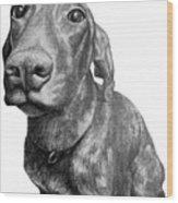 Valentine The German Shorthair Wood Print