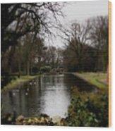 Valentines Park Wood Print