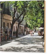 Valldemossa Street View Wood Print