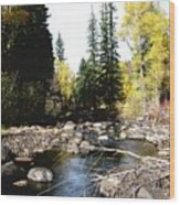 Vallecito Colorado I Wood Print