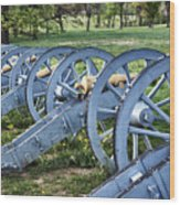 Valley Forge Artillery Park Wood Print