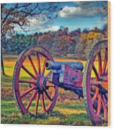 Valley Forge Canon Wood Print