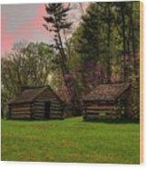Valley Forge Natioanl Park Wood Print