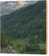 Valley In The French Alps Wood Print