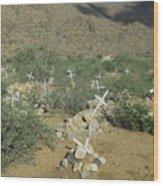 Valley Of Dead Men's Bones Wood Print
