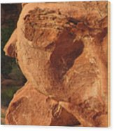 Valley Of Fire - Nevada's Crown Jewel Wood Print by Christine Till