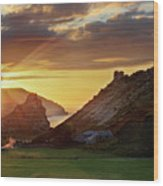 Valley Of The Rocks Wood Print