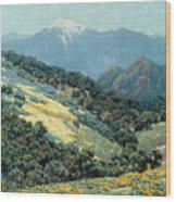Valley Splendor Wood Print
