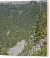 Valley View Of Mt. Rainier Wood Print
