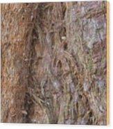 Valleys In The Wood Wood Print