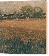 Van Gogh: Arles, 1888 Wood Print