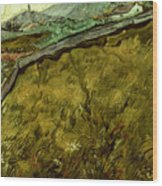 Van Gogh: Field, 1890 Wood Print