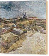 Van Gogh: Gardens, 1887 Wood Print