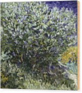Van Gogh: Lilacs, 19th C Wood Print
