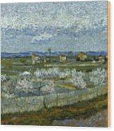 Van Gogh: Peach Tree, 1889 Wood Print