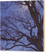 Van Gogh Tree Wood Print