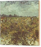 Van Gogh: Vineyard, 1888 Wood Print