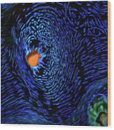 Van Gogh's Clam Wood Print