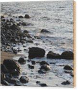 Vancouver Shoreline Wood Print