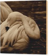 Vanity II Wood Print