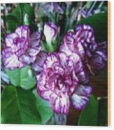 Variegated Carnations Wood Print