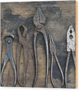Various Forceps Wood Print