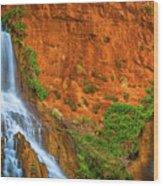 Vaseys Paradise Twin Falls Wood Print