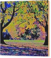 Vasona Two Oaks Fall Wood Print